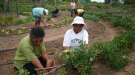 Prefeitura e SENAR promovem curso para mulheres da zona rural de Araguaína