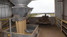Tocantins oferece até 94% de redução em impostos para atrair novos negócios