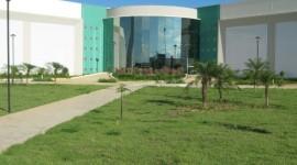 Especializações em diferentes áreas do conhecimento estão com inscrições abertas na UFT