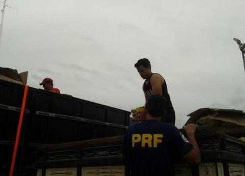 Em Araguaína, caminhão carregado de cerveja é detido por excesso de peso