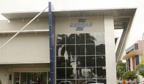 Sebrae em Araguaína prepara comemoração dos 30 anos do Tocantins