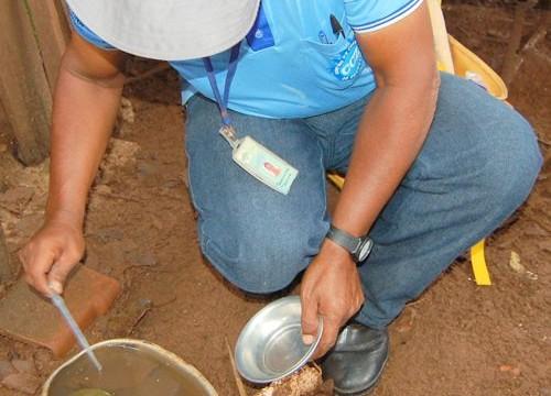 CCZ identifica dengue sorotipo 4 circulando em Araguaína