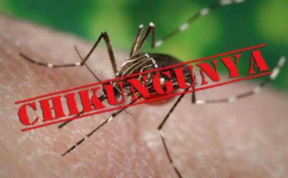 Pró-Saúde realiza treinamento sobre a febre Chikungunya