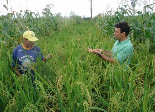 Sustentabilidade será tema de seminário em Araguaina