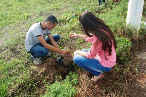 Calouros de Odontologia da Facit mantêm a tradição do projeto Plantar e Cuidar