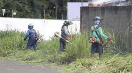 Para evitar proliferação do Aedes, Prefeitura realizará limpezadelotesbaldios