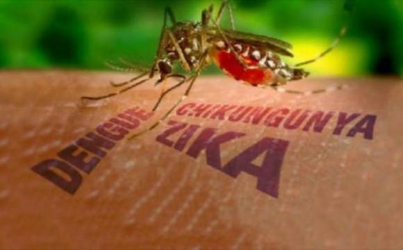 Os principais sintomas da Febre de Chikungunya