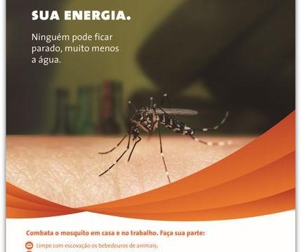 Energisa, parceira na luta contra o mosquito Aedes Aegypti