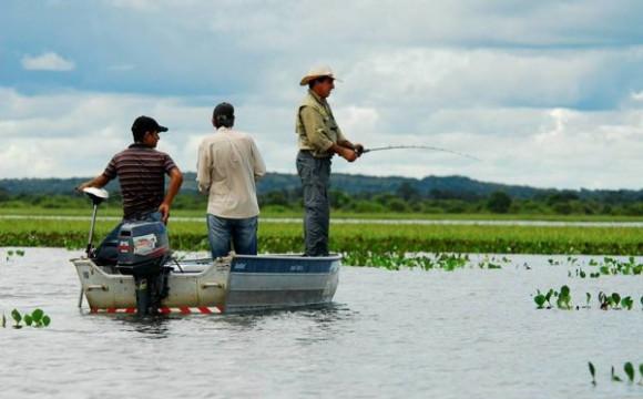 Licença de pesca pode ser solicitada no site do Naturatins