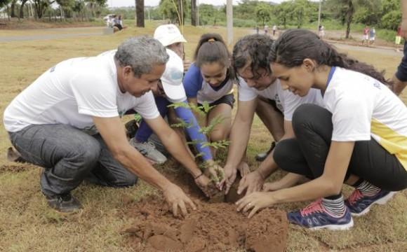 Iniciada Campanha de Arborização 'Plante uma Árvore no Parque Cimba'