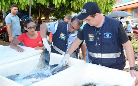 Vigilância Sanitária fiscaliza peixes à venda para Semana Santa em Araguaína