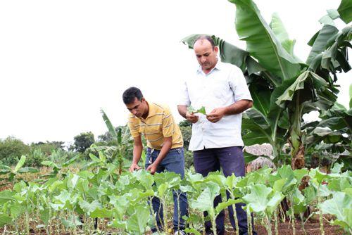 Ruraltins comemora 27 anos de serviços prestados aos agricultores familiares