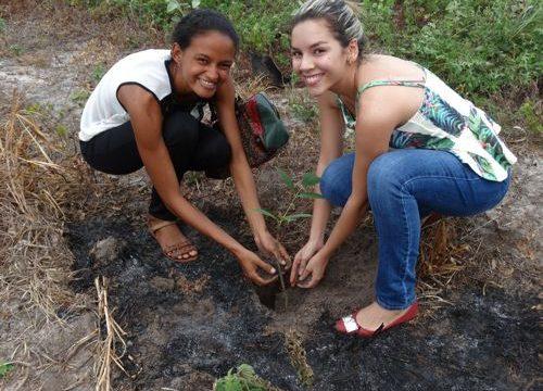 Projeto Plantar e Cuidar despertou a consciência ambiental nos calouros da FACIT