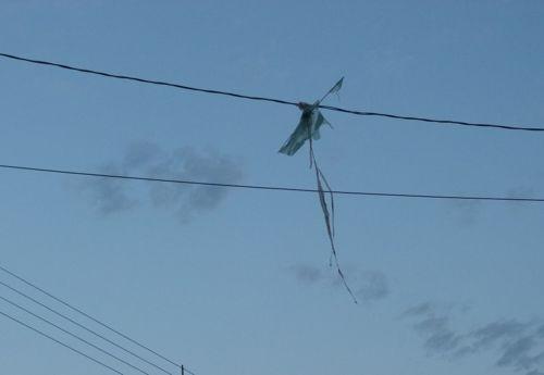 Energisa orienta sobre os perigos de soltar pipas próximo das redes elétricas