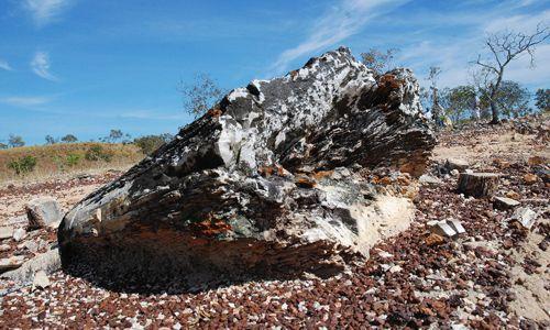 Monumento Natural das Árvores Fossilizadas do Tocantins completa seu 16º aniversário