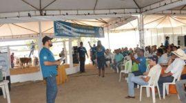 Leilão solidário marca encerramento da Agrotins; expectativa fica para o balanço financeiro