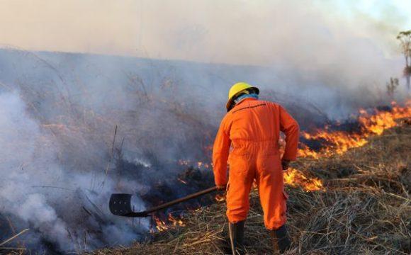 Meio Ambiente realiza queimadas controladas em assentamentos para evitar incêndios