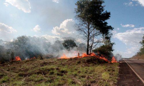 Tocantins suspende autorização de queima controlada durante estiagem