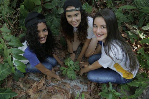 Meio Ambiente e escolas fazem plantio de mudas no Dia da Árvore em Araguaína