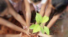 Estudantes participam de ações de conscientização na Semana Mundial da Água