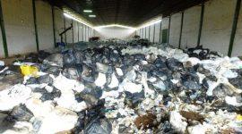 Empresas são multadas em R$ 22 mi por crime ambiental com lixo hospitalar
