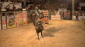 Sávio Pereira vence o Rodeio da Expoara 2019